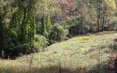 Lot 1 Hood Acres, Blairsville, GA